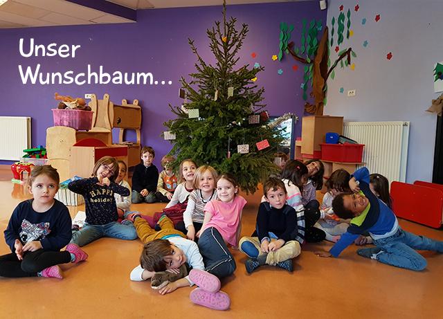 AFA Buc Wunschbaum